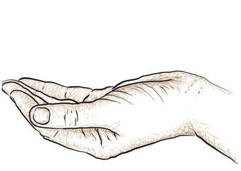 mano che sostiene