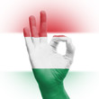 Hand OK sign with Hungarian flag