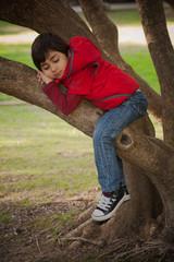 bambino arrampico sull'albero