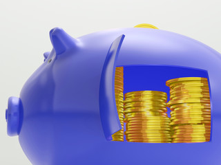Gold Coins Shows Savings And Investment