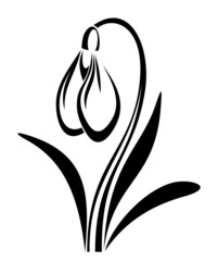 Black silhouette of snowdrop flower. Vector illustration.