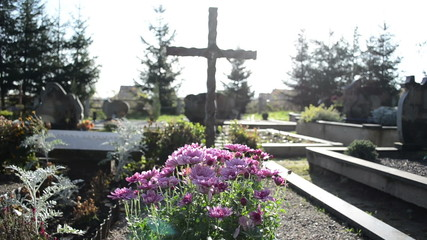 chrysanthemums autumn flowers cemetery grave monuments cross
