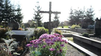 chrysanthemums autumn flowers cemetery grave monuments cross