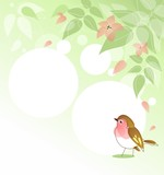 Background with leafs, blossom and redbreast