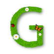 Grass letter G on white background