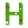 Grass letter H on white background