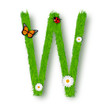 Grass letter W on white background