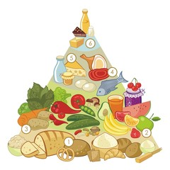 Omnivore Food Pyramid