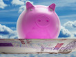 Flying Pig Shows High Prosperity And Investment