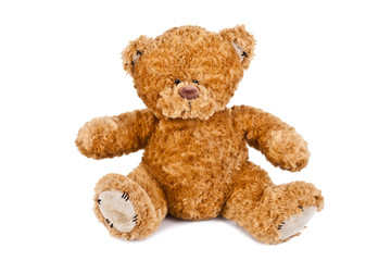 oso de peluche aislado