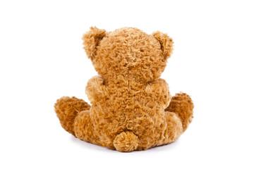 oso de peluche de espaldas