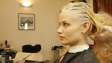 Professional female hairdresser dyeing female customer