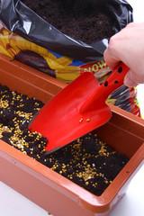 Planting - balcony plants - fertilizer