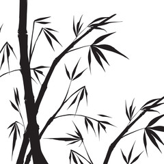 Bamboo isolated illustration.