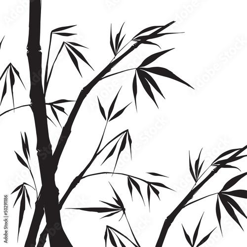 Bamboo isolated illustration.
