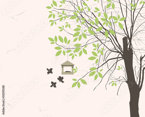 spring landscape with tree young leaves and bird feeders