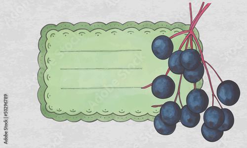 vintage label with a elderberry fruit