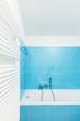 Modern house interior, bath and bathroom,