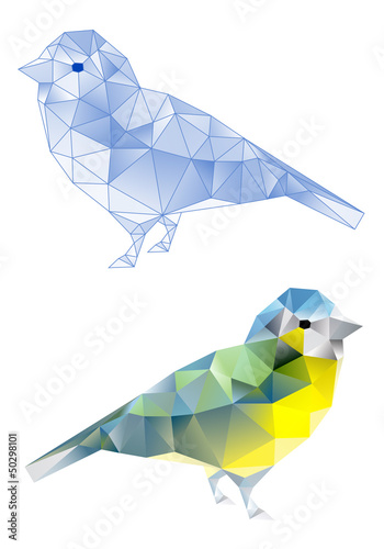 Staande foto Geometrische dieren birds with geometric pattern