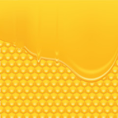Honey Background 2