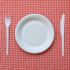 Disposable paper plate.