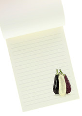 Recipe  book. Eggplants painting on blank notebook page