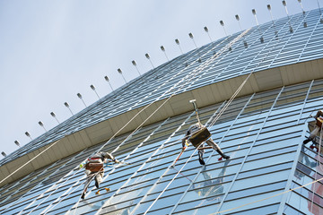 Brigade of window cleaners works on facade of high-rise building