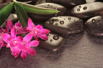 Massage and wellness with hot stones