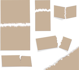 Papier, verschiedene Abrisskanten/ braun