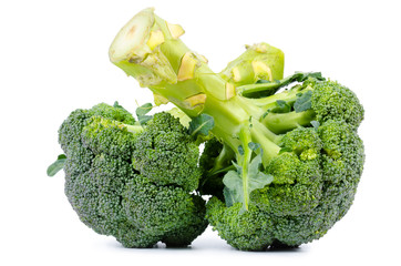 Two heads of fresh raw broccoli