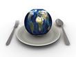 Земной шар на тарелке