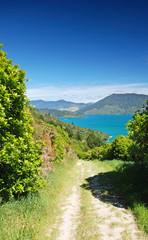 Trekking in Marlborough Sounds