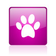 animal footprint violet square web glossy icon