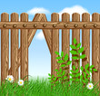 Wooden fence on green grass with daisy