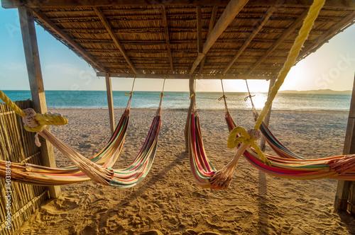 Bright Hammocks and Beach