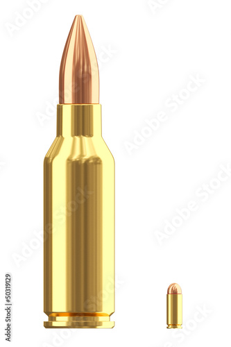 Big and small ammo cartridges on white
