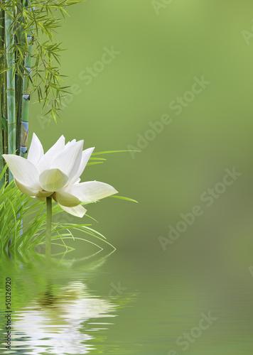 fond décor relaxant asiatique