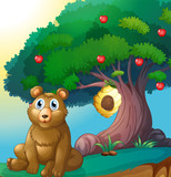 A bear in front of a big apple tree with a beehive