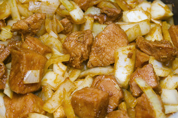 meat and onion pieces