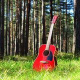 guitar acoustic in the grass in the forest