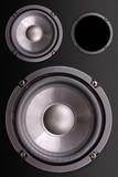 Loudspeakers enclosure poster