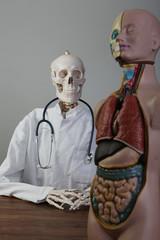 skelett als arzt mit stethoskop