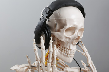 skelett hört musik