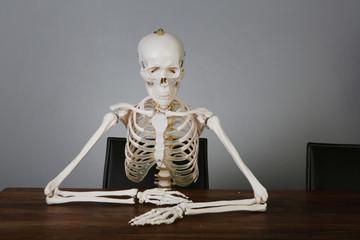 skelett am tisch