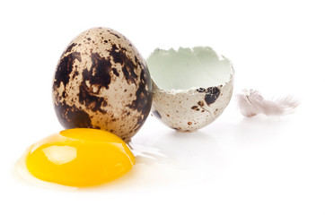 Egg yolk and quail egg with feather isolated on white background