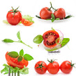 Collections of Tomatoes and leaves of spinach isolated on white