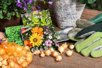 Saatgut, Steckzwiebeln und Gartenwerkzeug