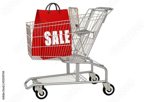 Shopping bag in shopping cart