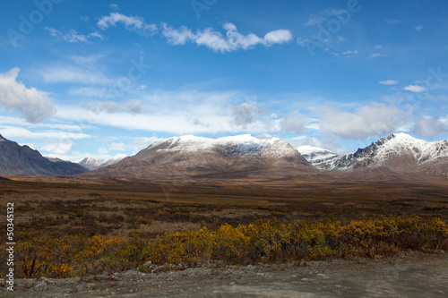 Tundra in Fall