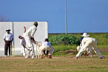 joueur de cricket avec batteur